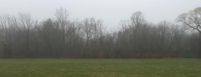 misty_landscape