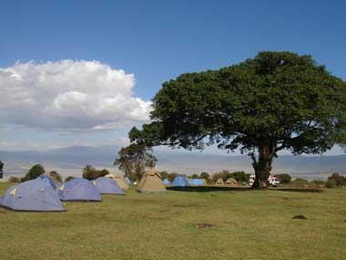 TZ_simba-campsite_m