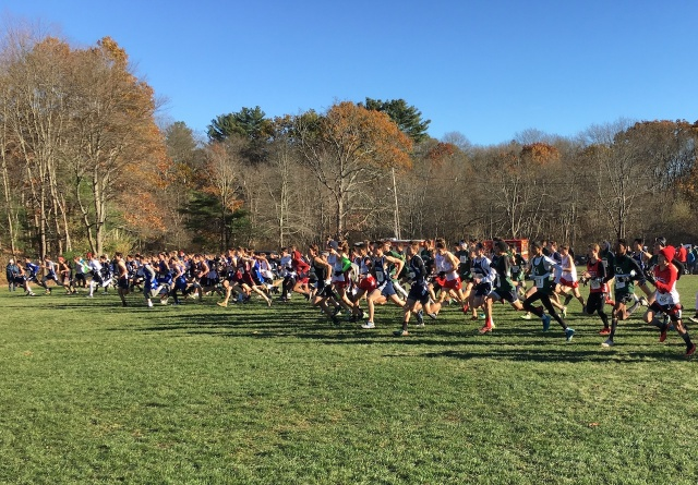 NEPSTA 2017 XC Boys Start.jpg